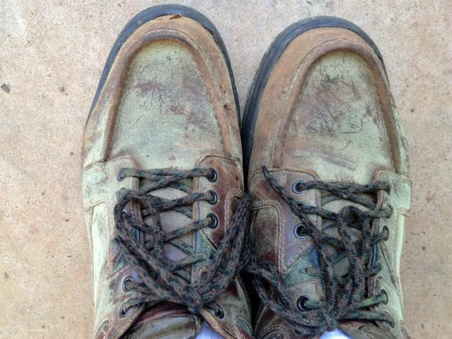 minilypseShoes